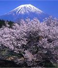 Giáo dục đạo đức ở Nhật Bản - Đôi điều suy nghĩ