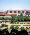 Vai Trò Của Nhà Nước Trong Việc Xây Dựng Một Trường Đại Học Đỉnh Cao Cho Việt Nam: Bài Học Thành Công Và Thất Bại